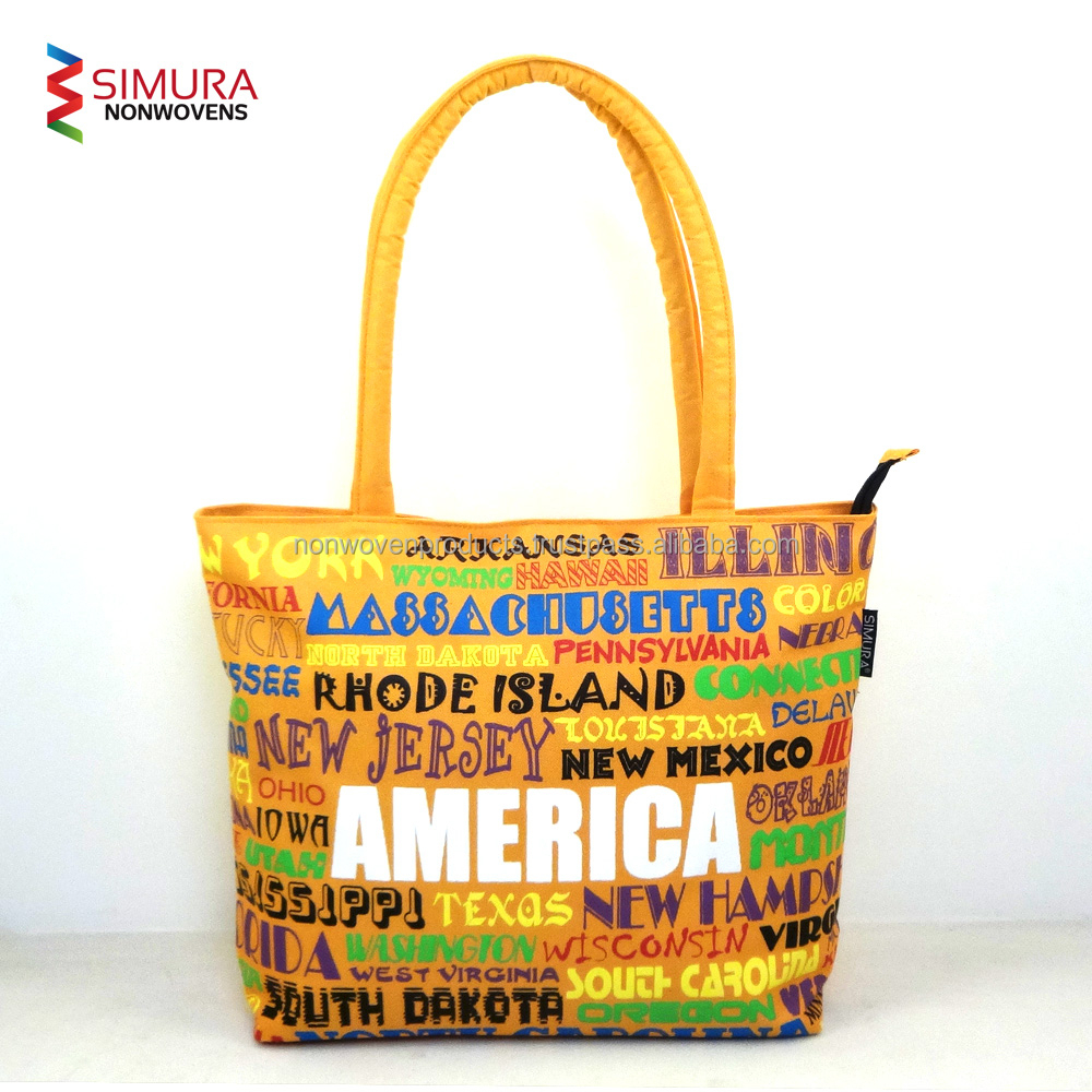 Ladies New Design Bag with Colorful Fabric
