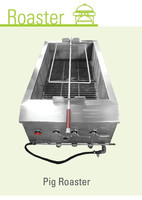 Asian Pig Roaster Oven