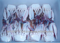 High Quality Frozen Cutting Crab VERY HIGH GRADE Hot Sales High quality