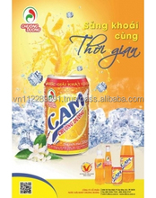 Canned Soft Drinks - Orange Carbonate Drink 330ml