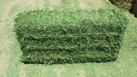 Quality Alfalfa and Timothy Hay For Animal Feeds