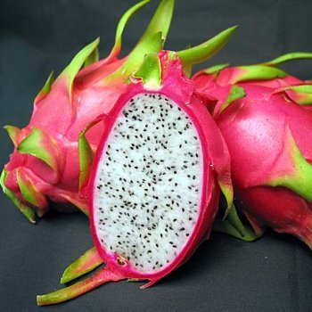 VIETNAM DRAGON FRUIT/ +84963818434 whatsapp