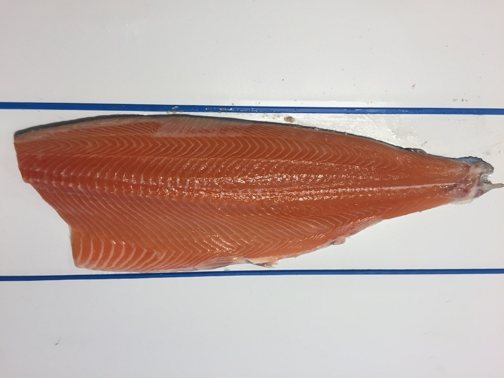 FRESH SALMON FILLETS - NORWEGIAN/ICELANDIC - ATLANTIC SALMON