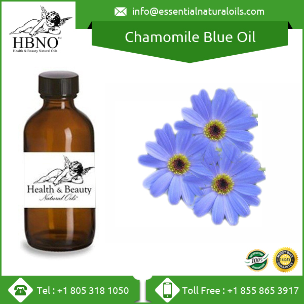 Hot Selling Natural Chamomile Blue Essential Oil