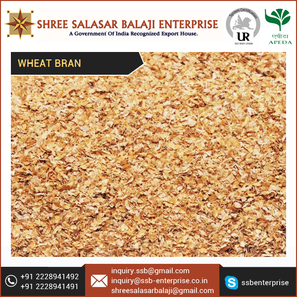 Animal Feed Wheat Bran Bulk Supplier at Low Price