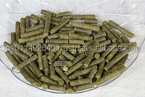 Moringa Poultry Feed Additives