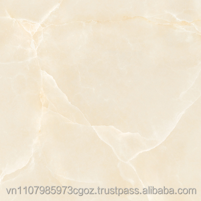 600x600mm Porcelain digital tiles, Best Vietnam supplier #6058; ceramic tile; floor tile