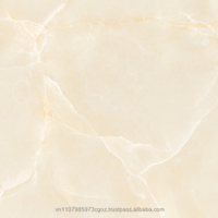 600x600mm Porcelain Digital Tiles Best Vietnam