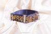 Dog Collar Martingale, 5 cm wide collar for greyhound