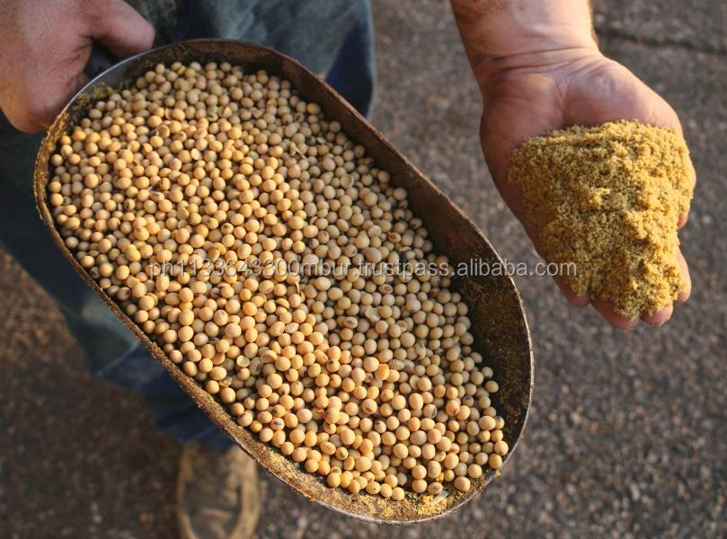 Hot Sale Soybean Meal