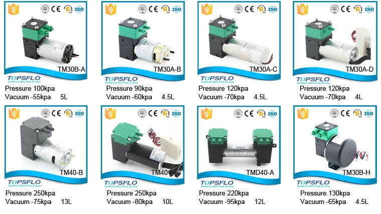 High Performance 6V 12V 24V Gas Pump