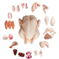 Frozen Halal Chicken , Claws , Feet, Quarters , Wings Brazil Origin