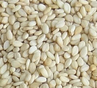 Natural White Sesame Seeds for sale