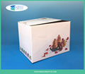 White Corrugated Box Packaging