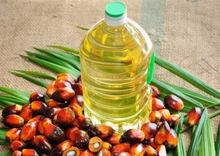RED PALM OIL/REFINED PALM OIL/PALM KERNEL OIL