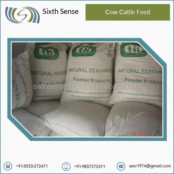 Beef and Cow Cattle Feed from Trusted Supplier
