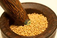 Yellow Mustard Seeds/Yellow Rapeseeds/Canola Seeds