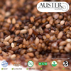 /product-detail/2016-teff-grains-from-reliable-supplier-in-the-usa-50033442952.html