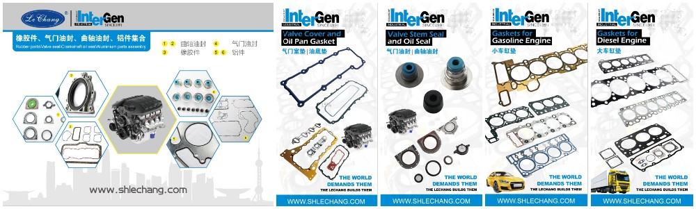 CYLINDER HEAD GASKET FOR J08C 11115-2451