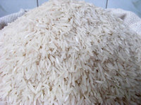 Quality Traditional basmati parboiled golden rice for sale