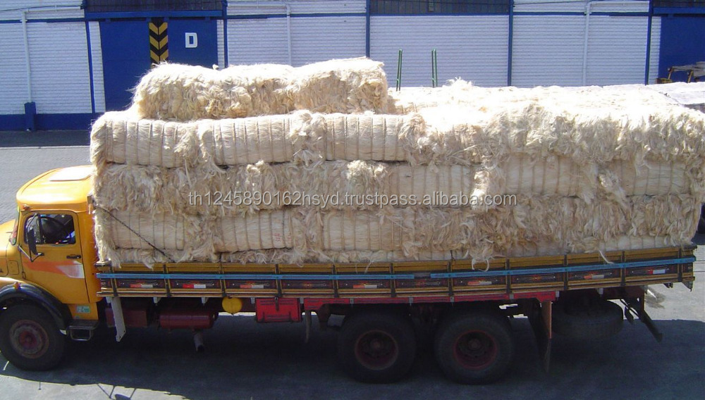 Quality UG Grade White Sisal Fiber for Building