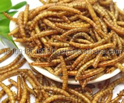 Vitamin Pet Food Dried Mealworms