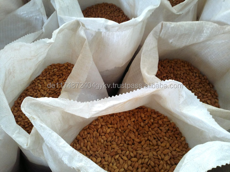 Sell: 2000 MT Raw Bitter Almonds Nuts for sale