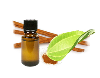 Vietnam 100% cinnamon essential oil, best price, good quality