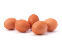 High Quality Fertile chicken hatching eggs for sale at cheap prices