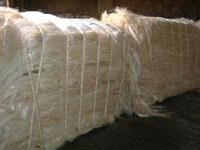 natural raw Sisal Fiber/Sisal fibre