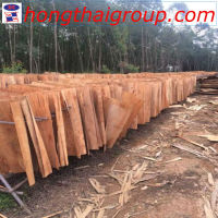 Good quanlity cheap price acacia eucalyptus thickness 1.7mm core veneer in Ha Noi Vietnam
