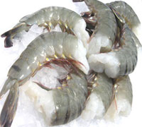 Cheapest price Black Tiger Shrimp,Dried Whole Stock Fish