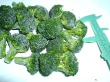 Egyptian IQF Frozen broccoli for sale