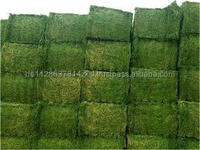 Alfalfa Hay Pellets For Cattles,Horses,Pigs and Other Small Animal Food