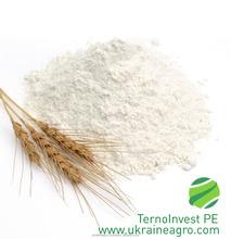 Wheat Flour price per ton
