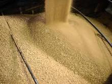 Excellent Quality Soybean Meal for Animal Feed