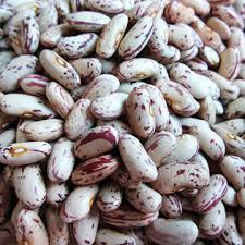 sugar beans in south africa/price for sugar beans/light speckled sugar beans/LSKB