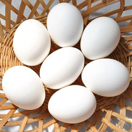 Farm Fresh Brown Table Chicken Eggs