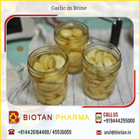 100% Fresh Peeled Garlic in Brine Supplier