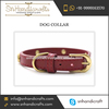 Finely Finished Leather Dog Collar For Pet at an Affordable Price for Bulk Sale
