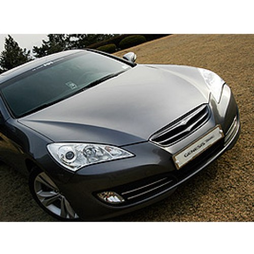 [ARTX] Hyndai Genesis Coupe - Eagles Radiator Tuning Grille(no.2246)