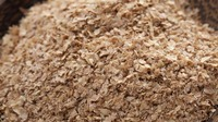 high protein wheat bran for sale