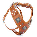 Export Quality Leather Dog Harness And Leash