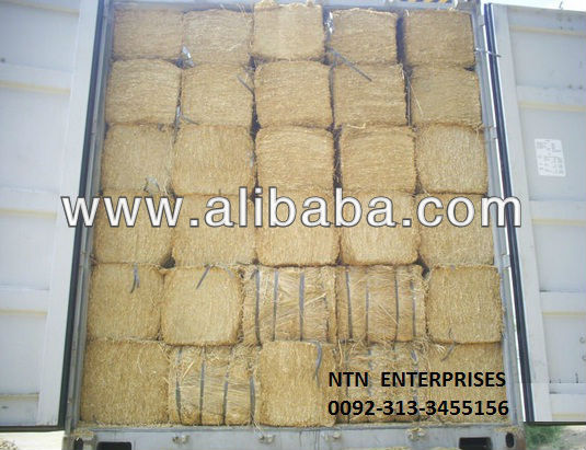 Best Quality Wheat Straw, Special fodder for Cows.