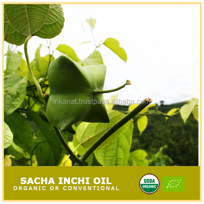 Sacha Inchi oil organic or conventional