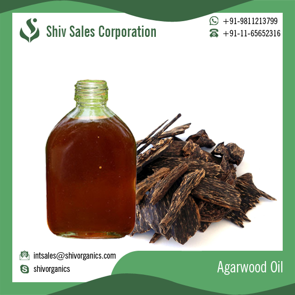 Agarwood Oil for Medicines Incense and Aromatic Applications