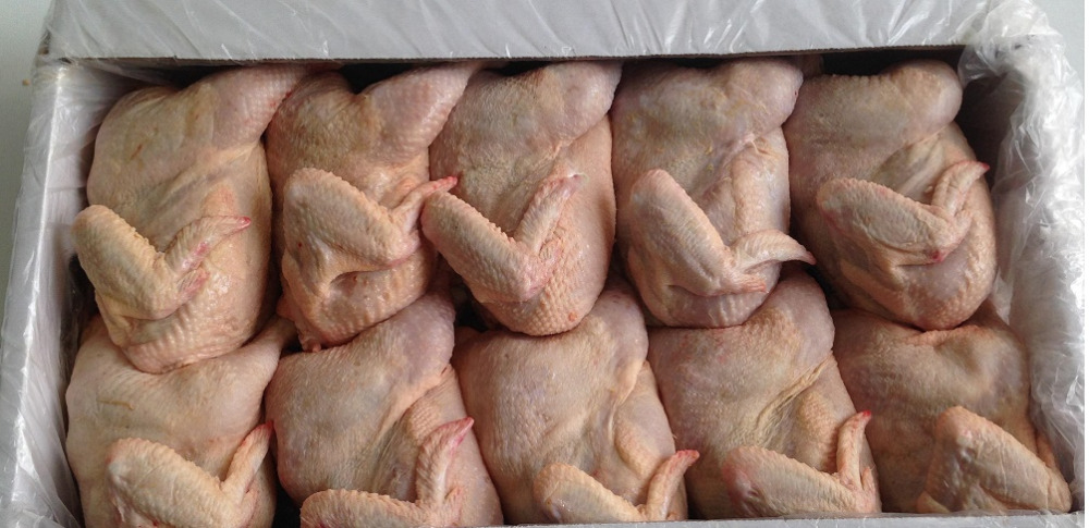 "Halal Grade ""A"" Brazilian Chicken , IQF whole chicken for sale"