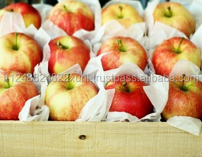 Fresh Fuji Apples 100% Guaranteed Quality