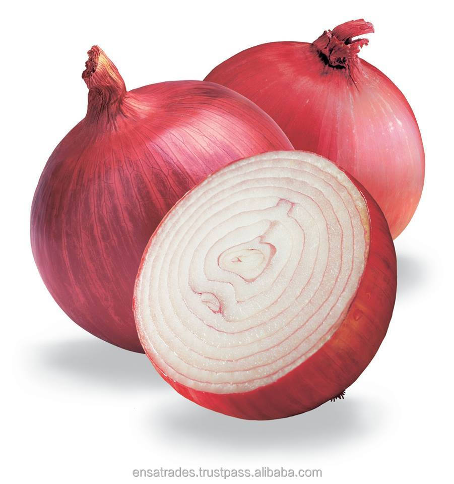 Red Onion in Bulk for UAE Market | Onion Supply to Hong kong Market | Red Onion Price For Sri Lanka
