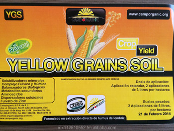 yellow grain